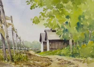 Connecticut Tobacco Barns by Diane Dubreuil