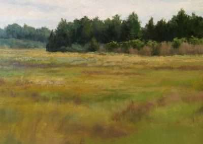 Early Fall Marsh