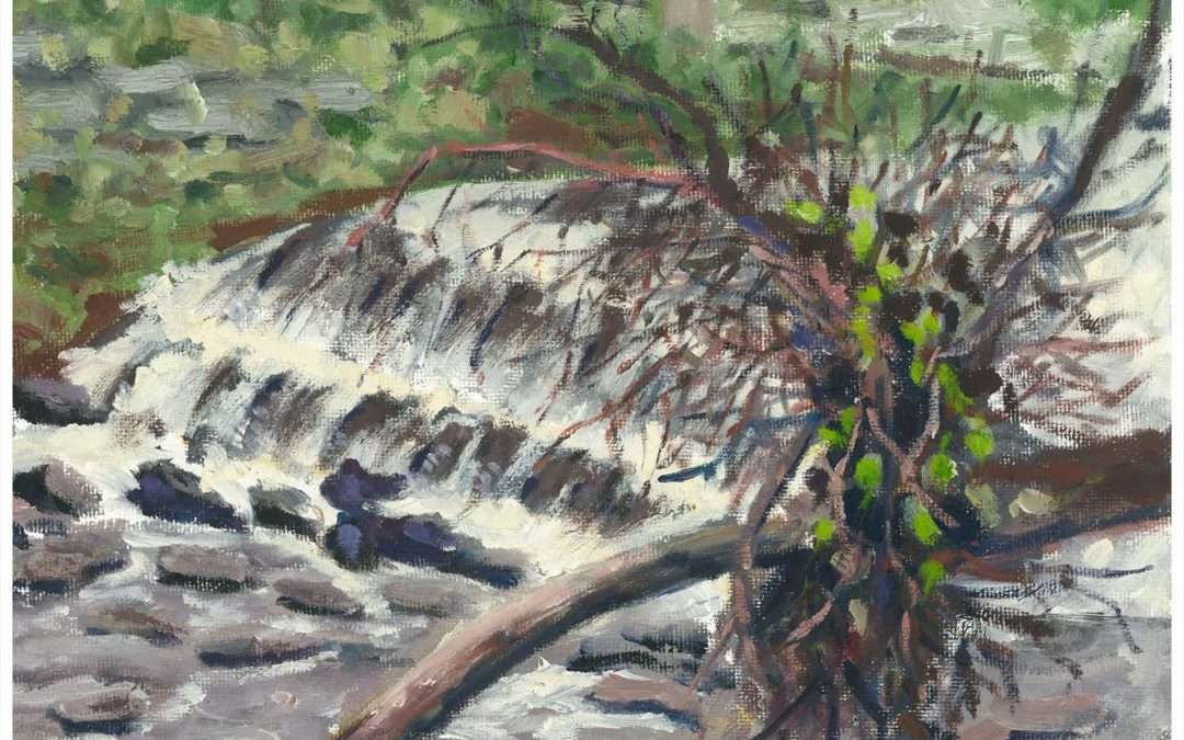Image of rushing water, along a creek, alongside, upended tree Oil by William Cesario