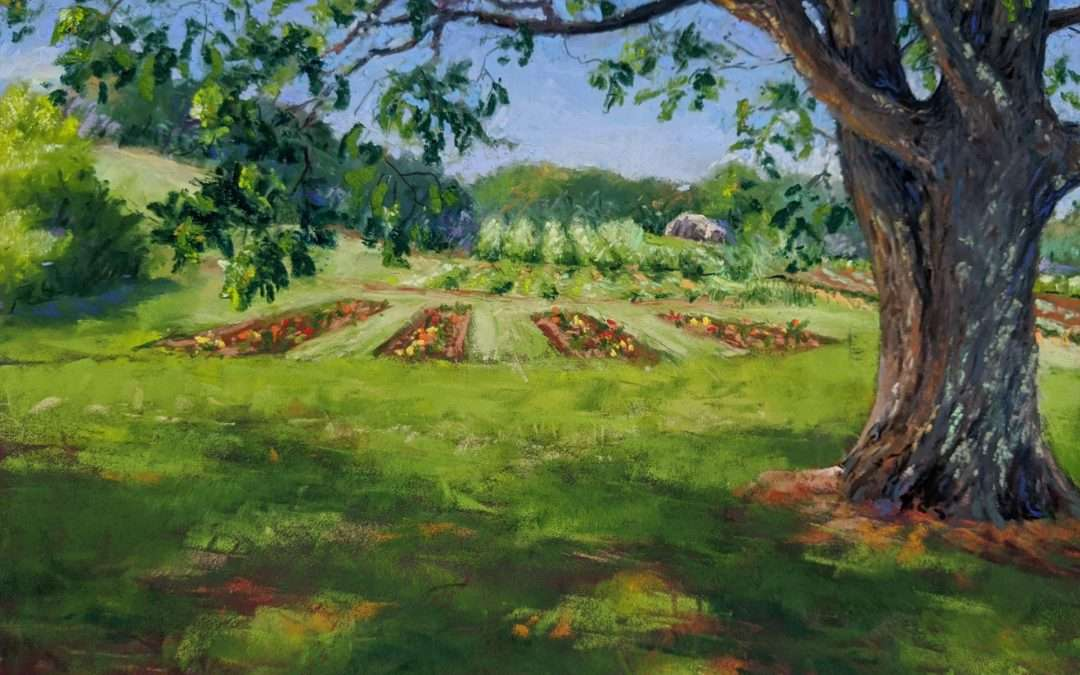 view into distance from under a shade tree Soft Pastel by Elizabeth Scott