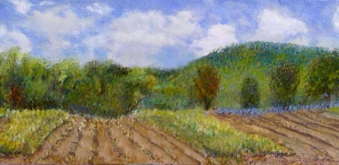 A painting of a bright, but cloudy day in Franklin County, CT Oil by Janice Drake