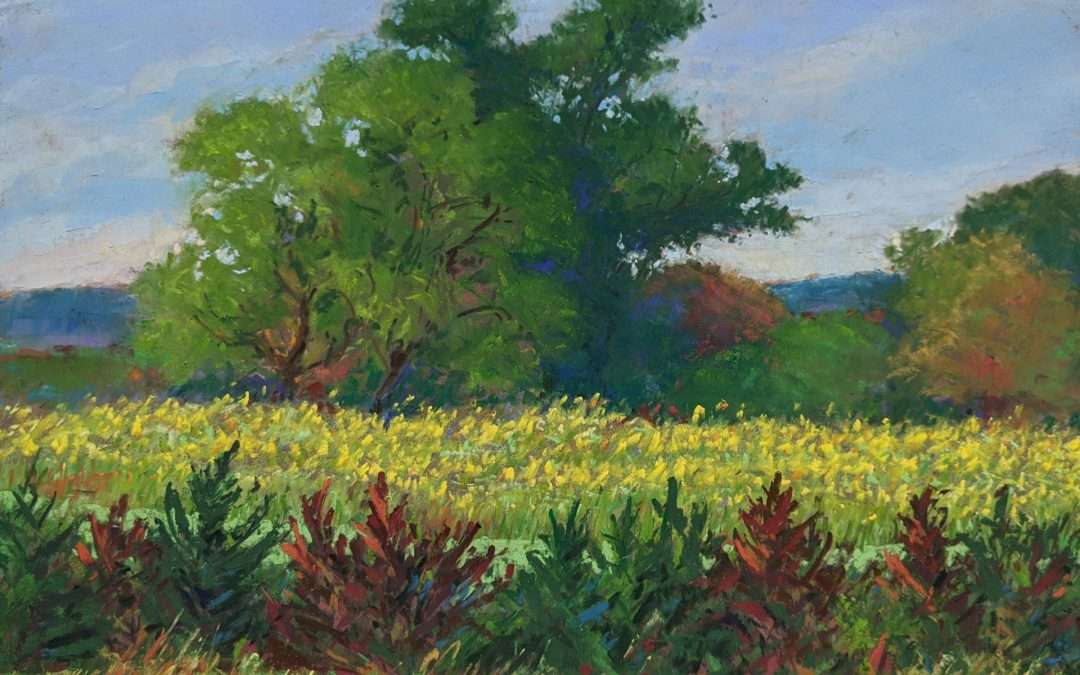 view across rows of crops to trees in distance Soft Pastel by Elizabeth Scott