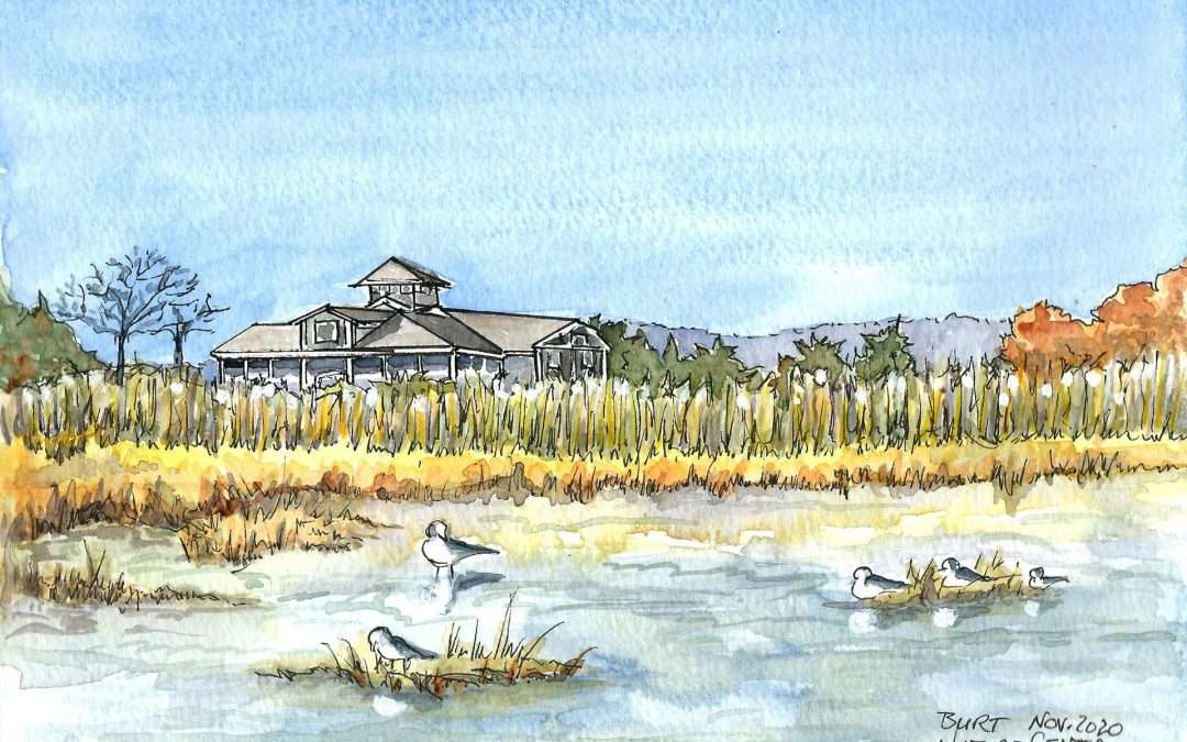 Nature Center at Meigs Point, Nov. 2020 Watercolor And Ink by Brenda Burt