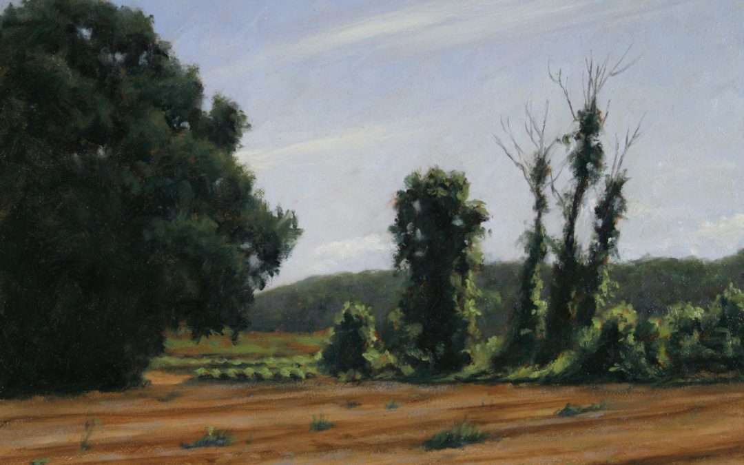 Farm field with vine covered trees. Oil by Doug Andersen