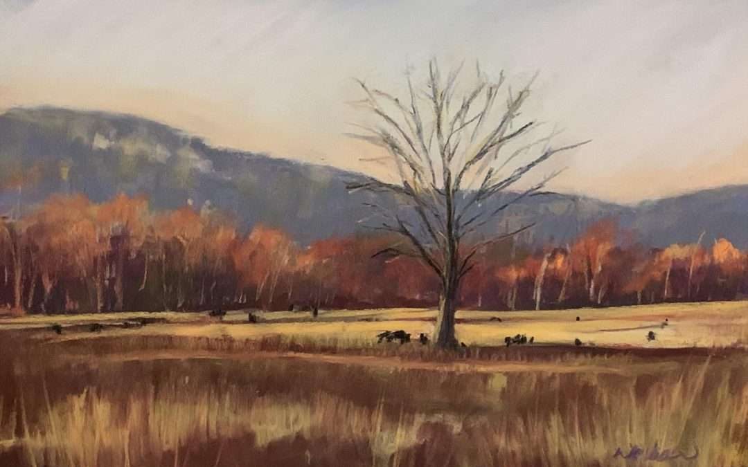 I love this spot! Looking over the pastures and tree lines to the Shawangunk Ridge. the white granite peak out form the blue mountain in the distance surrounded by the blaze of fall color. Soft Pastel by Laura Martinez-Bianco